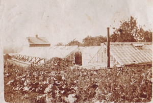 Market Garden next to St Quinton Cottage